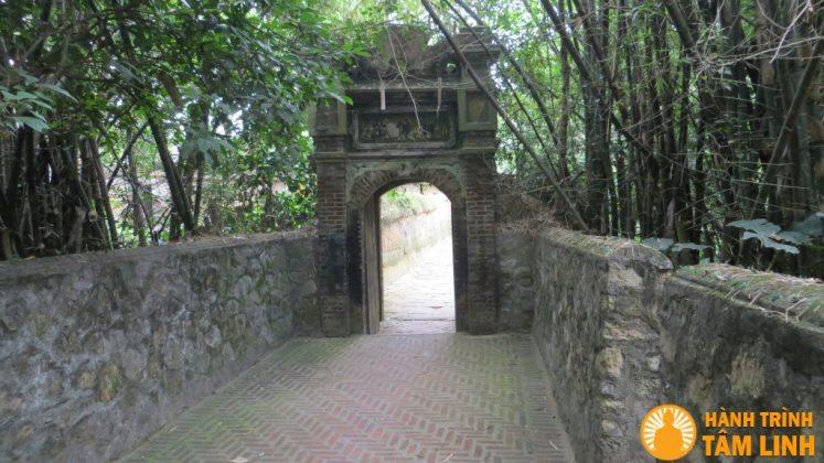 Hàng tre xanh cao trước cổng chùa