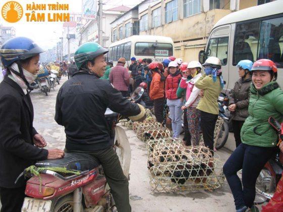 Chợ gà ngày Tết