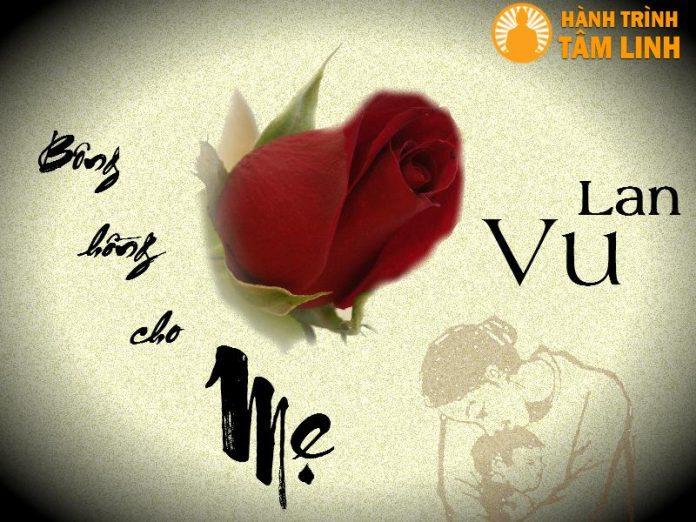 Bông hồng cho mẹ