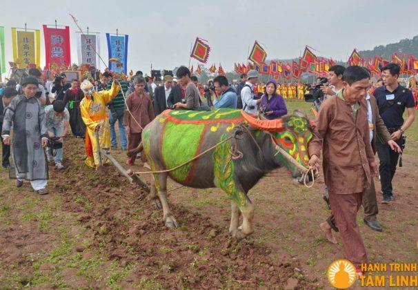 nhà Vua trong lễ Tịch Điền