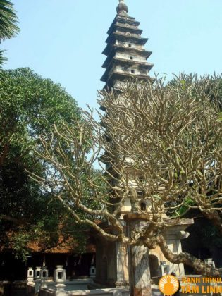 Tháp Phổ Minh