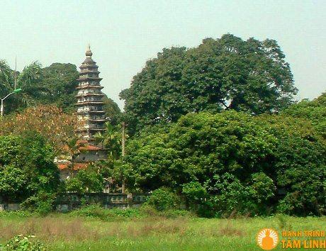 Tháp Phổ Minh nhìn từ xa