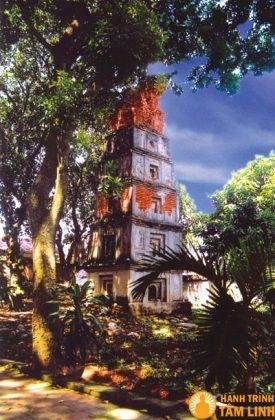 Tháp Cói