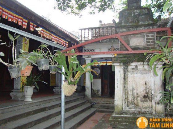 Vườn hoa lan chùa Hộ Quốc