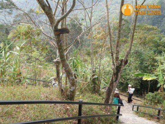 Đường xuống nhà ga cáp treo từ chùa Hoa Yên
