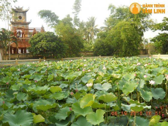 Hồ sen Chùa Sùng Nghiêm Diên Thánh