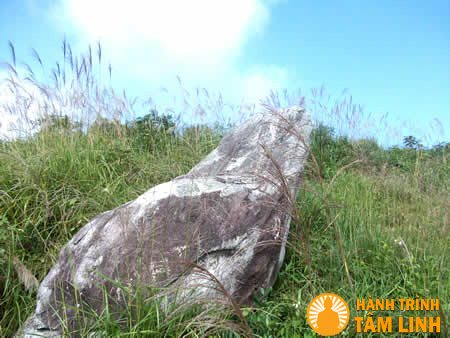 Ngai đá trên chùa Đại Tuệ