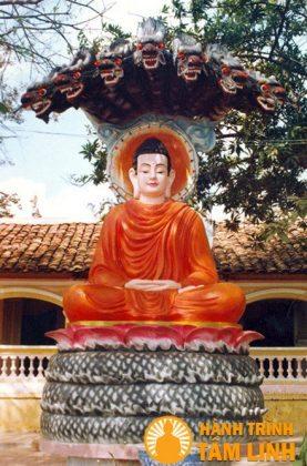 Tượng đức Phật Thích Ca chùa Hội Sơn