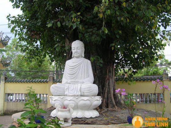 Đức phật dưới gốc cây bồ đề ở chùa Đại Giác