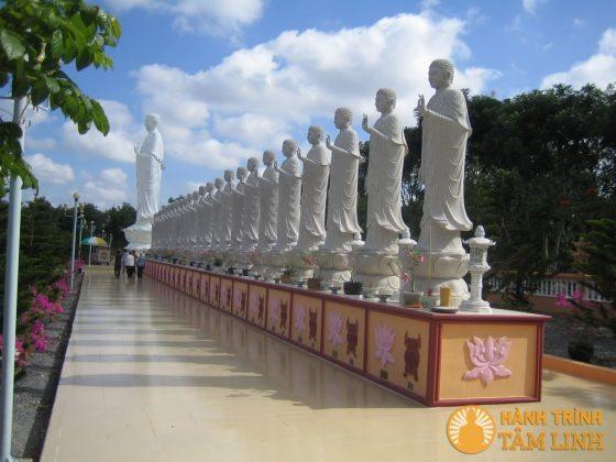 Vườn tượng Phật A-di-đà chùa Đại Tòng Lâm