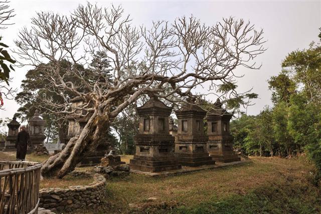 Vườn tháp Hòn Ngọc