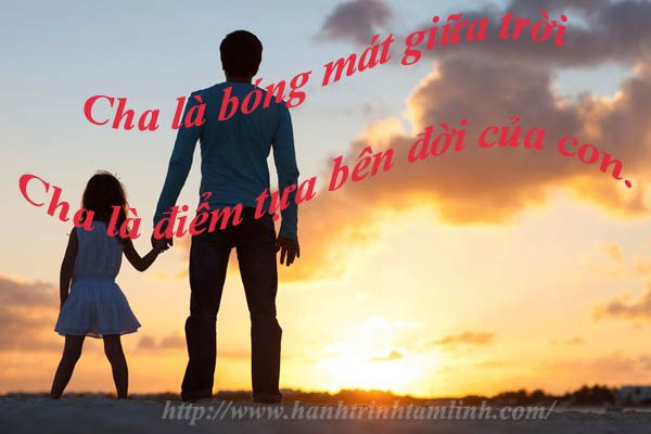 Những câu nói hay và ý nghĩa về tình cha P3