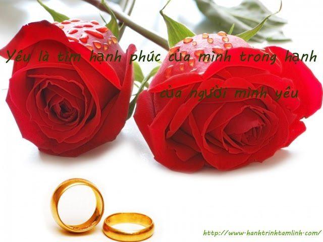 Những câu nói về tình yêu lãng mạn P1