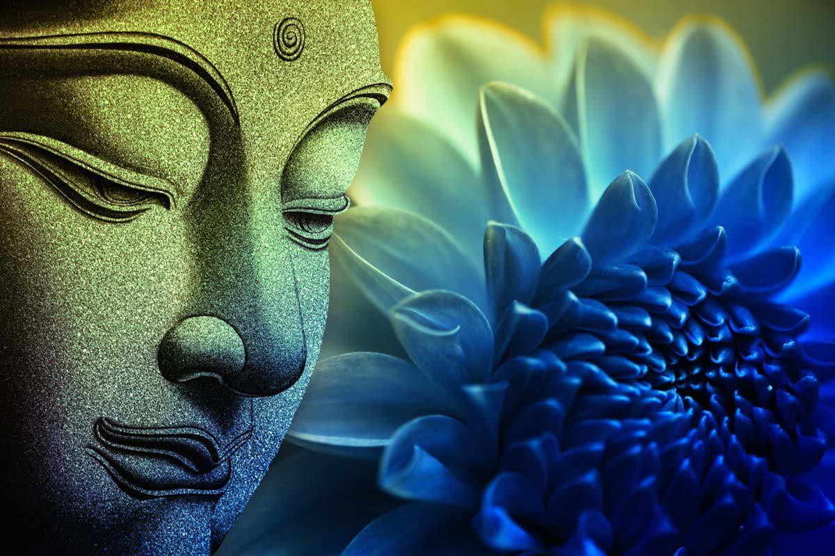 Hãy hiểu đúng về thuyết luân hồi của đạo Phật