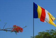Lá cờ ngũ sắc