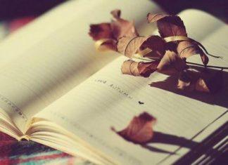 Lòng người là giấy