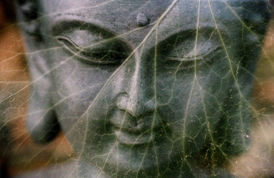 Quả báo 9 vạn năm do vô lễ làm nhục Phật